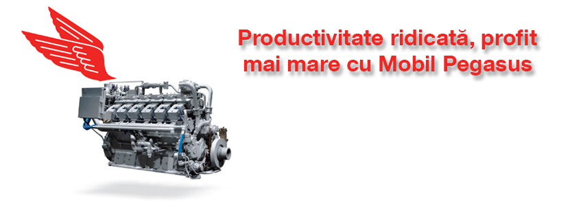 Productivitate ridicata, profit mai mare cu Mobil Pegasus